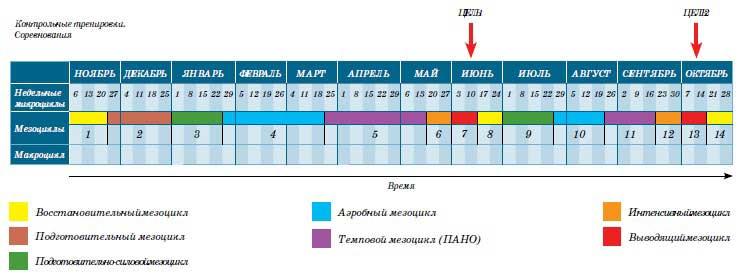 План тренировок триатлон олимпийская дистанция
